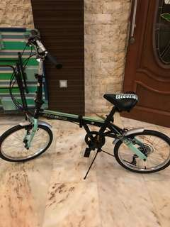Foldable Bicycle Aleoca