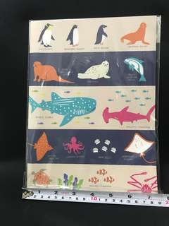 Direct from Japan- Brand new notebook with lines and sea animal aquarium-themed learning