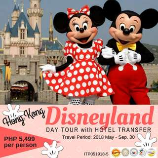 Disneyland Day Tour with Hotel Transfer