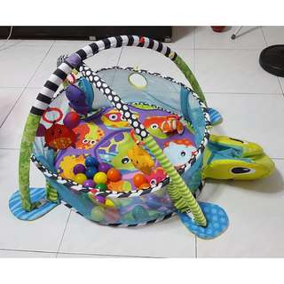 Baby Play Gym & Ball Pit