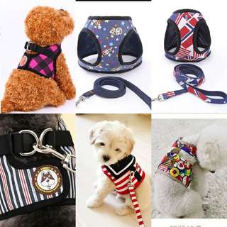 Pet Harness Leash