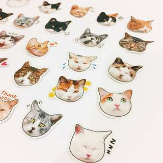 Set 41 : 25 pieces of cat face stickers