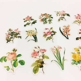 Set 43 : 16 pieces of vintage flower stickers