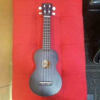Group Guitar and Ukulele lessons