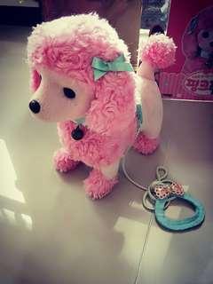 🚚 拉拉粉紅貴賓狗