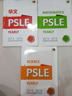 P6 PSLE Chinese/Maths/Science