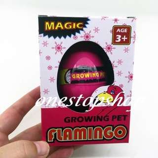 Shop : FLAMINGO EGG GROWING PET TOYS 1 pc