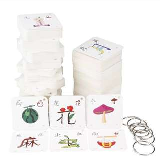 Chinese flash card 象形文字 289 cards with hooks