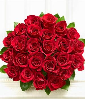 photo photo photo & 24 Red Roses bouquet / flower bouquet / roses bouquet / anniversary ...