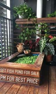 Fish Pond / Wooden Garden Fish Pond