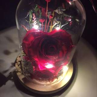 Love2U - large red preserved rose to delight your loved ones