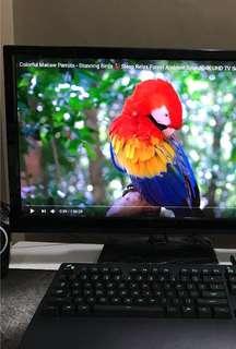Qnix Matte 1440p multi true IPS monitor (overclockable)