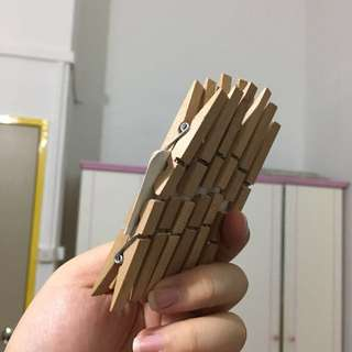 Wooden Paper Pegs (12pc)