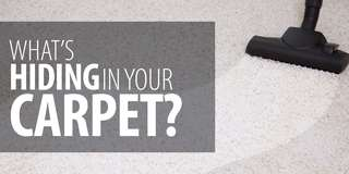 Carpet Cleaning (Residential and Commercial)