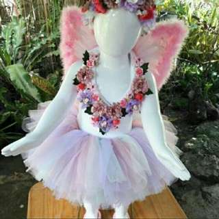 Fairy costume Set for rent/for sale