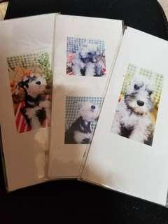 可愛小狗 動物協會義賣 捐款