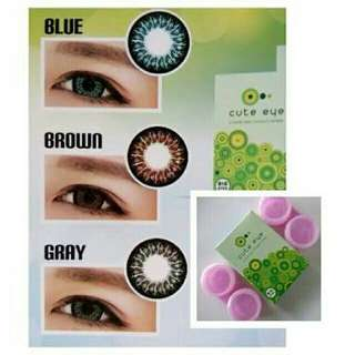 SOFTLENS CUTE EYE NORMAL