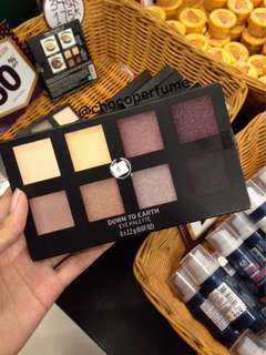 The body shop eye palette down to earth