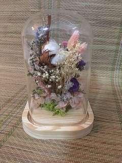 Signature Glass Dome - Cotton candy island