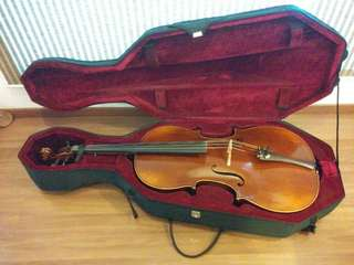 Cello case/bag (4/4)