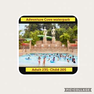 Cheapest Adventure cove tickets