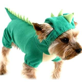 Pet dinosaur outfit