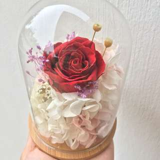 Preserved rose flowers in a bell jar