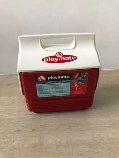 Playmate Mini Cooler Box 6 pack