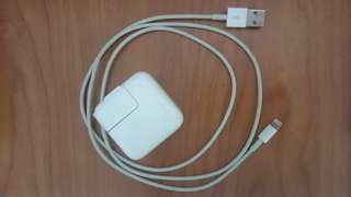 ipad air 2 128g 金+原廠smartcase