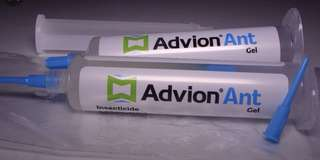 Advion Ant Gel Bait 1 tube of 30g