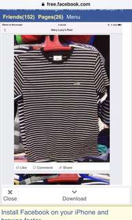Lacoste Shirt (stripes)