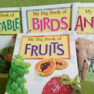 My BIG Book of Animals Fruits Birds Vegetables