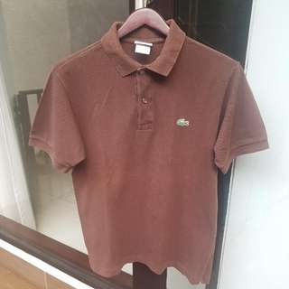 Lacoste Brown Polo Shirt