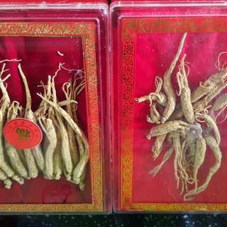 Ginseng buy One Get One Free