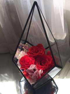Preserved flower 保鮮花