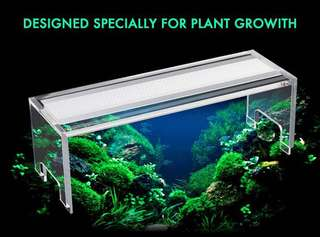 Aquasky style LED lights