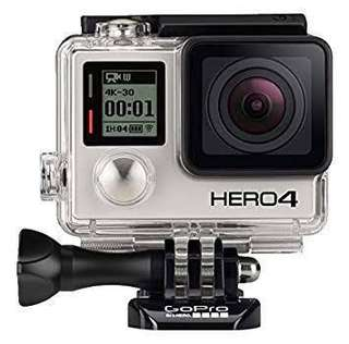 Looking for go pro 4 accessories