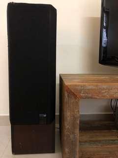 Standing Speakers x 2