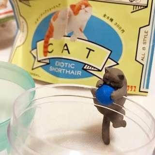 貓咪杯緣 灰貓