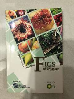 Figs of Singapore