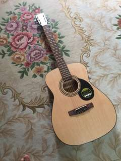 Acoustic Guitar Cort