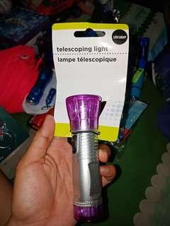 Telescoping Light Led Light