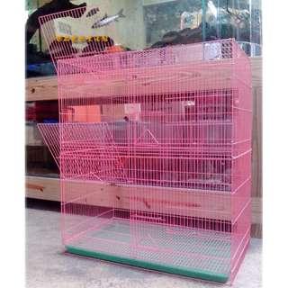 =臻品寵物鳥園=粉紅2.5呎2.5尺2呎半2尺半加高長方鳥籠鼠籠橫斑虎皮鸚鵡太陽鳥月輪吸蜜玫瑰鸚鵡白文蜜袋鼯花栗鼠小飛鼠