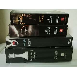 Twilight saga novel