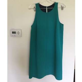 NEW Shift Dress (medium)