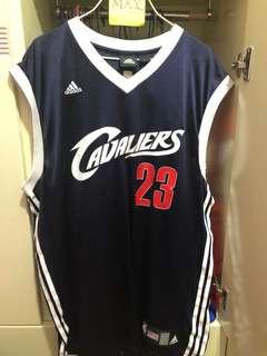 騎士 James Adidas jersey ( L, 購自 nba store)