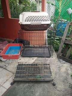 Sangkar Kucing