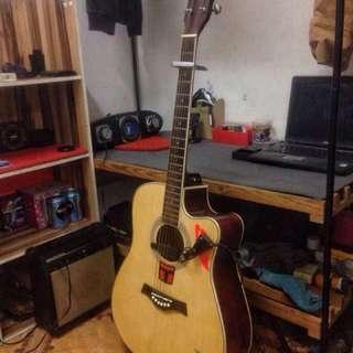Acoustic/Speaker/Pick-Up