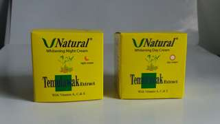 Temulawak V natural cream Day n Night