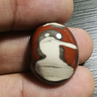 "Natural ""Pelican"" Image Agate. 100% Natural. Nice to Collect. Make Jewelry as ""Bird Agate"" for Pendant."